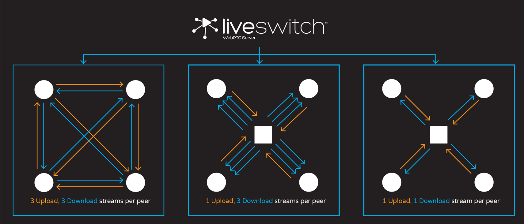 Liveswitch Topology